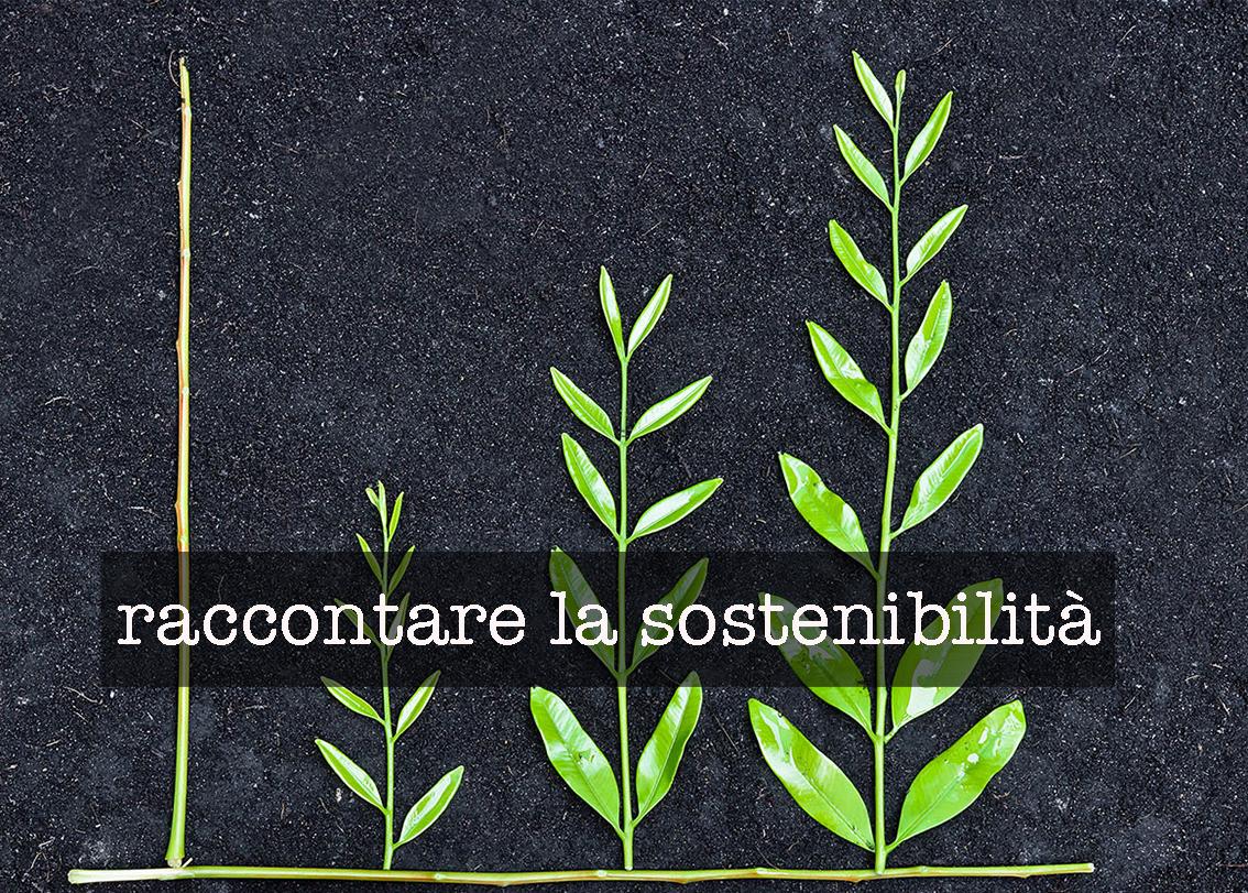 la sostenibilità ambientale